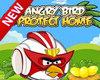 Angry bird protect home