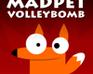Madpet friv volleybomb
